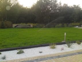 Zakładanie trawników sianych i z rolki