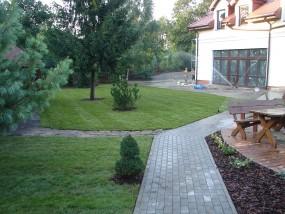 Trawniki z rolki oraz z siewu Podkowa