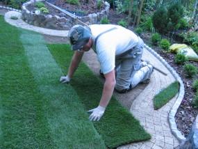 Trawniki z darni rolowanej