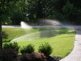 Automatyczne podlewanie ogrodu