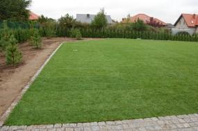 nawadnianie trawników