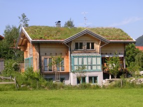 Projektowanie zielonych dachów