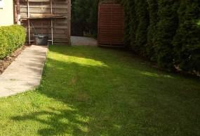 Zakładanie trawników z siewu i z rolki
