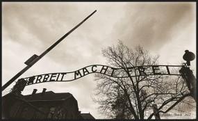 Zwiedzanie Muzeum Auschwitz Birkenau