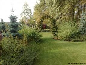 Zakładanie ogrodów