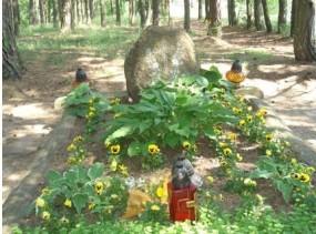 obsadzanie grobu kwiatami