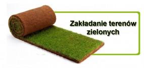 Zakładanie terenów zielonych