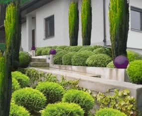 projektowanie, kompleksowa realizacja ogrodów