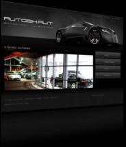 Strona Internetowa  www.autoskaut.pl