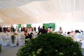 Organizacja eventów plenerowych