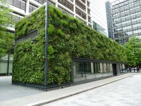 Prace porządkowe w budynkach użyteczności publicznej