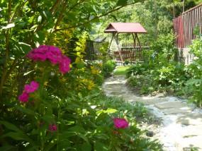 rewitalizacja ogrodu