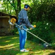 Sprzątanie, pielęgnacja terenów zielonych