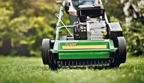 Usługi ogrodnicze, pielęgnacja zieleni, ogrody