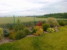 Założenie trawnika z siewu