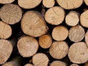 Sprzedaż drewna do kominków