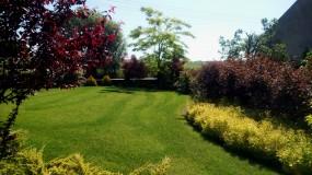 Zakładanie, nawożenie, koszenie trawników