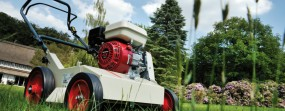 Wertykulacja i regeneracja trawników