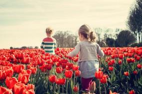 Pomoc terapeutyczna dla dzieci i młodzieży