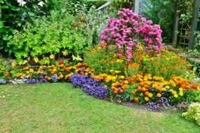 Przygotowanie roślin do wegetacji i nawożenie