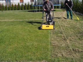 usługi ogrodnicze-pielęgnacja ogrodu