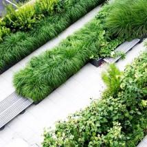 Projektowanie terenów zieleni publicznej
