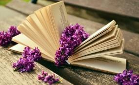 Korekta książek, treści na strony www, dokumentów finansowych itp.