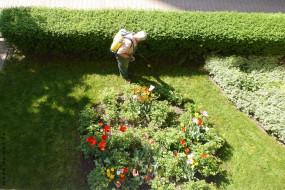 Całoroczna pielęgnacja ogrodów