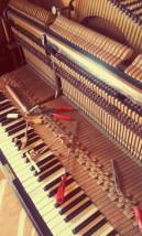 Serwis i renowacja pianin i fortepianów