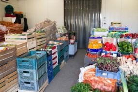 Dostawa owoców i warzyw